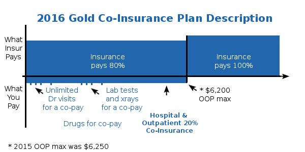 Health Care Reform Gold Health Plan Detailed Description