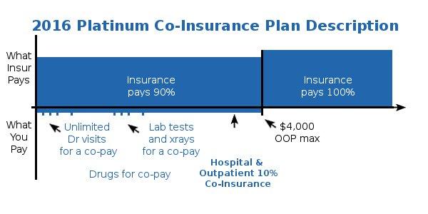 California Platinum Health Plan Details
