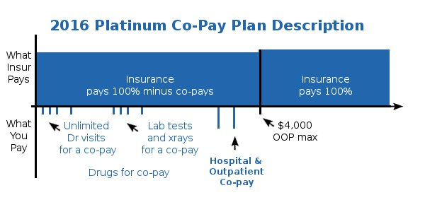 Health Care Reform Platinum Co-Payment Health Plan Details and Description