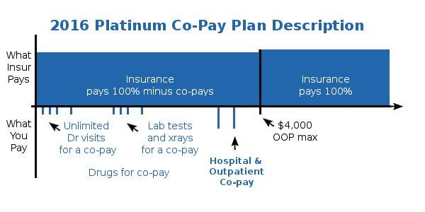 Health Care Reform Platinum Co-Payment Health Plan Details and Description