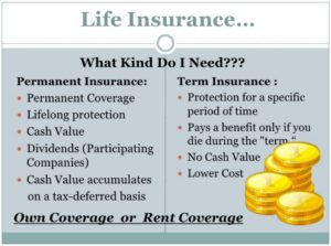 Is term life insurance the best option?