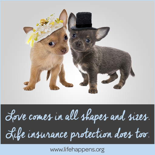 Life comes in all shapes and sizes, life insurance protection does too